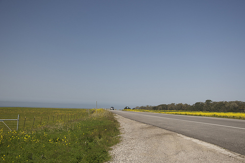 Still Thinking Roadtrips