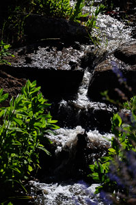Lake Charles Falls, Sonoma