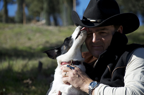 Listen Up! Cowboy Rules.