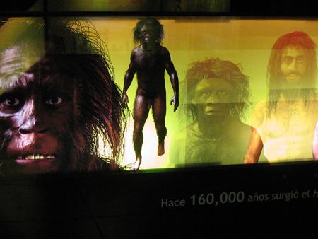 evolution display at Palacio del Gobierno, Oaxaca