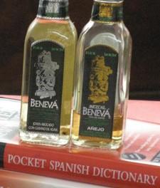 Más Español, Por Favor
