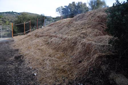 strawed hill