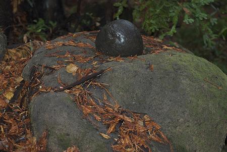miwok grinding stone