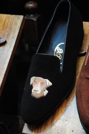 Terrier Shoe?