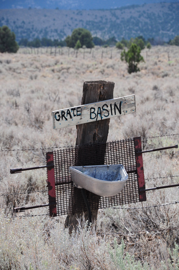 Nevada fence art