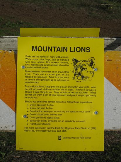 mountain lion warning
