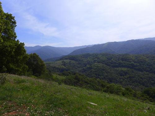 Santa Cruz Mountains from Almaden Quicksilver Park