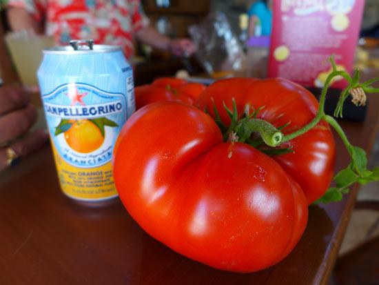 boxcar willie, beefsteak tomato, bigass tomato