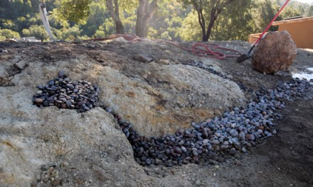 Building a Landscape Backbone