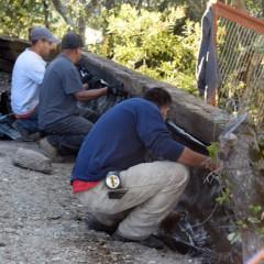 Operation Rebuild the Mountain